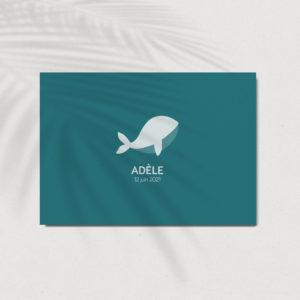 faire-part-de-naissance baleine atlier nougatine rennes