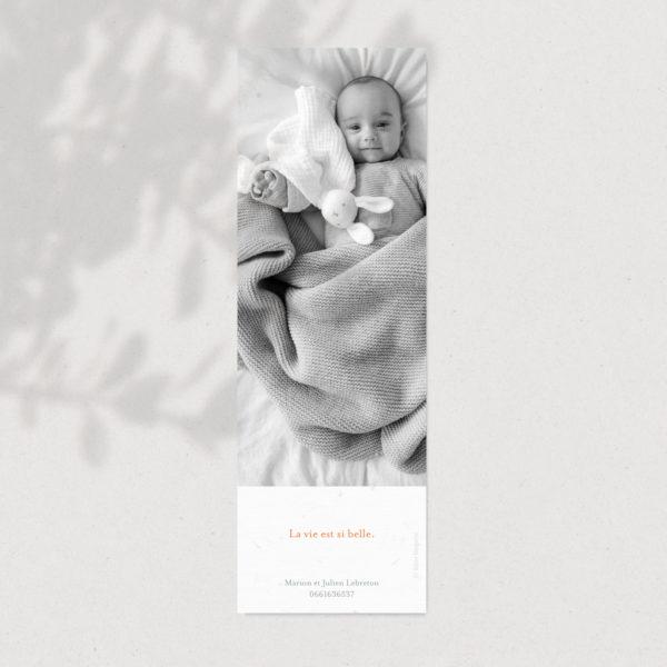 Faire-part de naissance marque page à fleur atelier nougatine